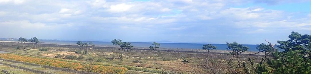 画像:太平洋を望む
